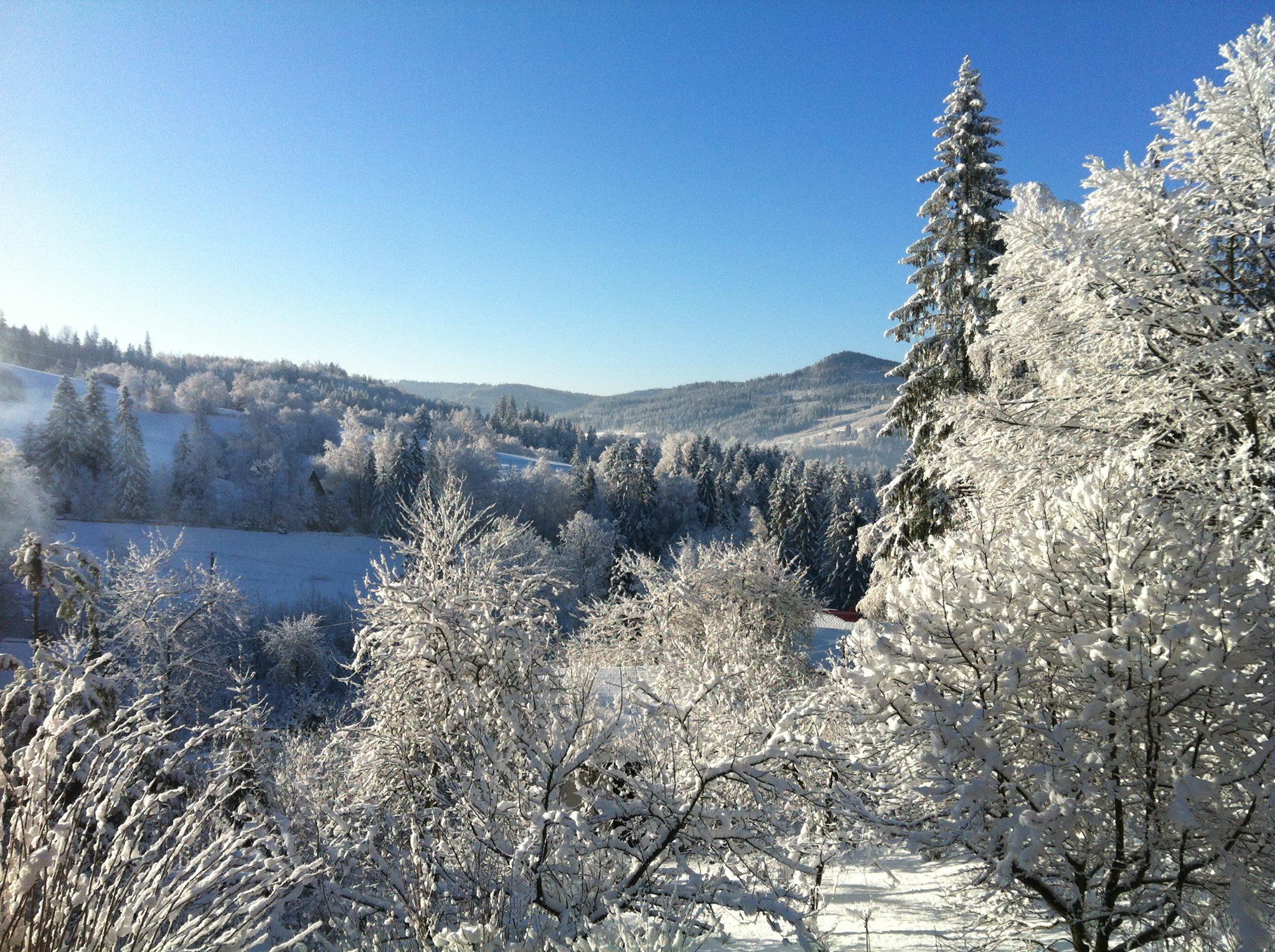 Mroźna zima U Wujcia Wisła Partecznik 20a Noclegi, Kwatery, Pensjonat