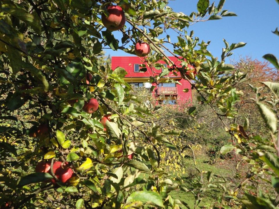 Ogród U Wujcia Wisła Partecznik 20a Noclegi, Kwatery, Pensjonat